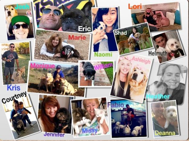 Experienced Animal Loving Staff